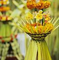 Balinese Ceremony by Dana Edmunds - Printscapes