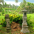 Balinese Rice Field Shrines by Mark Sellers