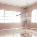 Ballerina Ghost by Steve Williams
