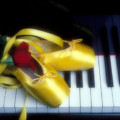 Ballet Shoes On Piano Keys by Garry Gay