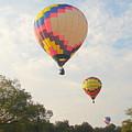 Balloon Race by Luciana Seymour