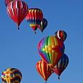 Balloons In Albuquerque by Karen McKenzie McAdoo