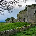 Ballyboggan Abbey, Co. Meath by Philip Mulhall