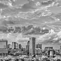 Baltimore Harbor Skyline Bw by Susan Candelario