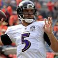 Baltimore Ravens by Bert Mailer