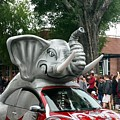 Bama Beetle by Kenny Glover