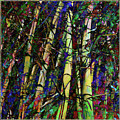 Bamboo by Barbara Berney