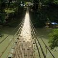 Bamboo Bridge by Robert Cunningham