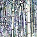 Bamboo Grove by Jeelan Clark