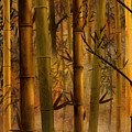 Bamboo Heaven by Peter Awax