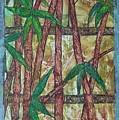 Bamboo by John Vandebrooke
