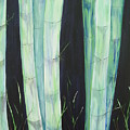 Bamboo by Murielle Hebert