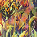 Bamboo Patterns by Rae Andrews