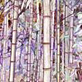 Bamboo Texture by Jeelan Clark