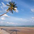 Ban Harn Beach by Adrian Evans