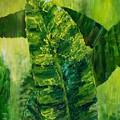 Banana Leaves II by Carol P Kingsley