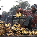 Banana Man On Cart In India by Diana Davenport