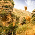 Bandit Country Near The Edge Of The Fan In Ronda Area Andalucia Spain  by Mal Bray