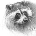 Bandit The Raccoon by Jacki Kellum