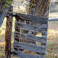 Bannack Gate At Sunrise by Teresa Wilson