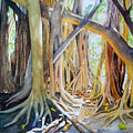 Banyan Shadow And Light by Terry Arroyo Mulrooney
