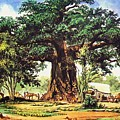 Baobab Tree - South Africa by Pg Reproductions