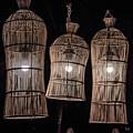 Bar Lights by David Rolt