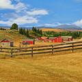 Bar U Ranch Alberta, Canada by Ola Allen