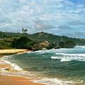 Barbados Beach by Gary Wonning
