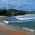 Barbados Berach by Gary Wonning
