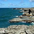 Barbados Coast by Arvin Miner