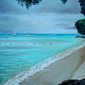 Barbados by Elizabeth Robinette Tyndall