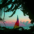 Barbados In Supercolor by Caroline  Urbania Naeem