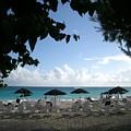 Barbados Umbrellas by Caroline  Urbania Naeem