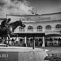 Barbaro by Kathleen White