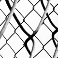 Barbed Wire by Fei A
