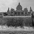 Barcelona Art Museum And Fountains by Georgia Fowler