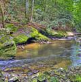 Bark Camp Creek 27 by Sam Davis Johnson