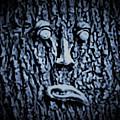 Bark Face Cyan by Rob Hans