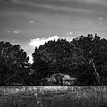 Barn And Palmetto-bw by Marvin Spates