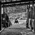 Barn Chores by Steven Clark