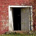 Barn Door And Cedar by William Tasker