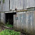 Barn Door by Jeff Roney