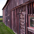 Barn Door Small by Steven Dunn
