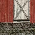 Barn Door by Steven Riker