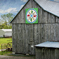 Barn Hex Sign by Brian Wallace