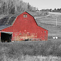 Barn In An Old Setting by Lisa Hebert