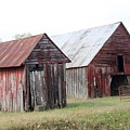 Barn In Kentucky No 100 by Dwight Cook