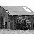 Barn In Kentucky No 58 by Dwight Cook