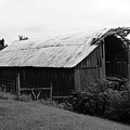 Barn In Kentucky No 86 by Dwight Cook